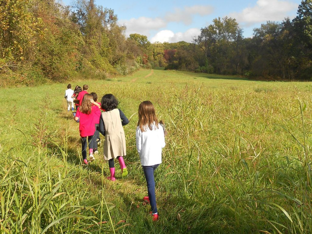 Elementary students on a nature walk in a field