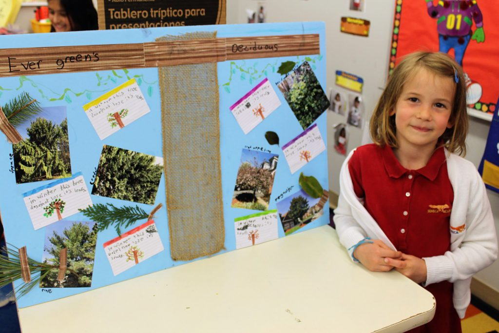 Elementary girl with science project about tree types