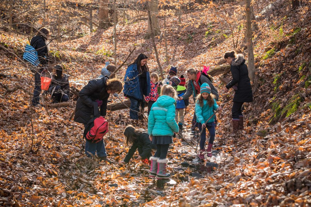 Elementary teachers and students examining a creek bed full of leaves