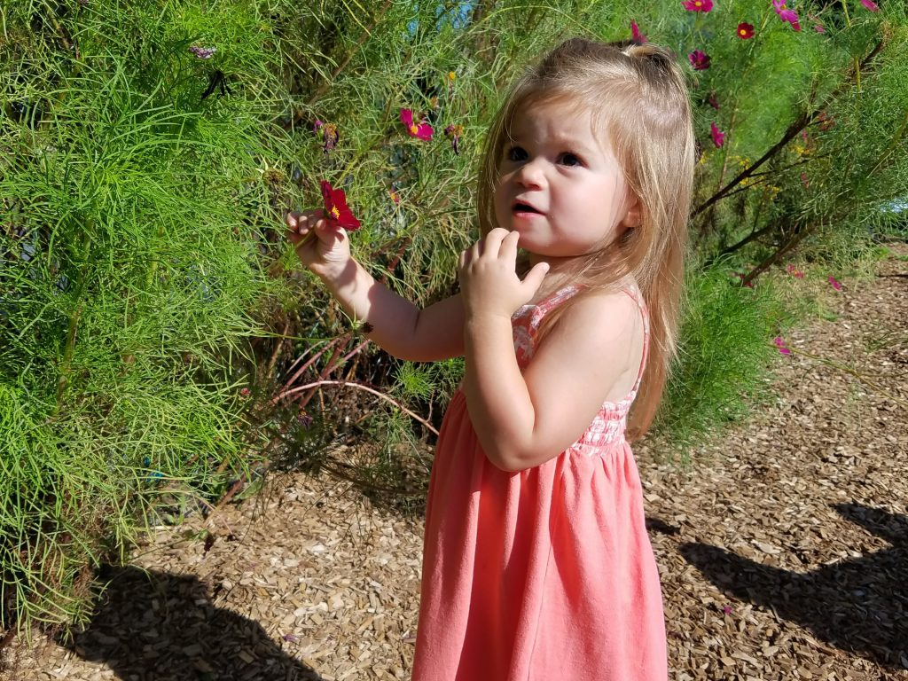 Young girl looking at flowers in the spring